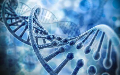 Het DNA van een verkoper